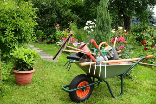 ogrody - zakładanie i projektowanie